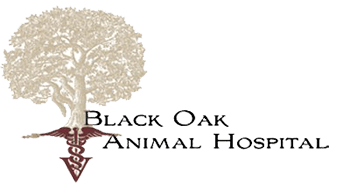 Black Oak Animal Hospital